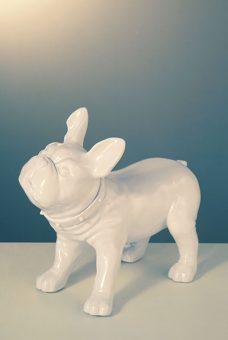 Mannequin-Works_Animal-Mannequin_Pooch-Range_French-Bulldog-D26-Gloss-White